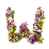 The letter «W» made of various natural small flowers. The letter «W» made of various natural small flowerson a light background royalty free stock photos
