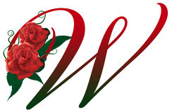 Letter W red floral  illustration. Red rose decorated letter W font , colorful and Stock Photography