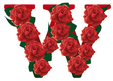 Letter W red roses  illustration Royalty Free Stock Image