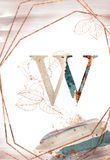 The letter w. Rose gold frame with letter, flowers and watercolor spots stock illustration