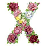 Letter X of watercolor flowers. Isolated hand drawn on a white background, wedding design, english alphabet royalty free illustration