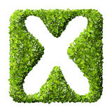 Letter X made of green leaves Stock Photography