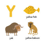 Letter Y. Cartoon alphabet for children.  illustration animal Yak, yellow fish, yellow baboon. Isolated on white background Stock Image