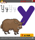 Letter y with cartoon yak. Educational Cartoon Illustration of Letter Y from Alphabet with Yak Animal Character for Children Stock Photos