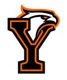 Letter Y with eagle head. Great for sports logotypes and team mascots vector illustration