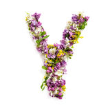The letter «Y» made of various natural small flowers. Stock Photos
