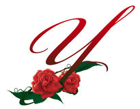Letter Y red floral  illustration. Red rose decorated letter Y font , colorful and Stock Image