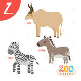 Letter Z. Cute animals. Funny cartoon animals in vector. ABC boo Royalty Free Stock Photo