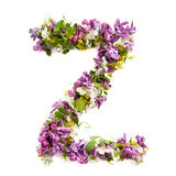 The letter «Z» made of various natural small flowers. Stock Photography