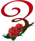 Letter Z red floral  illustration. Red rose decorated letter Z font , colorful and Royalty Free Stock Photo