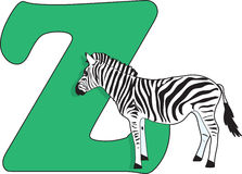 Letter Z with a Zebra Stock Images