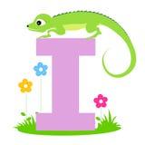 Lettera animale I di alfabeto Immagini Stock