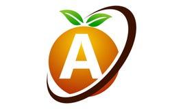 Lettera arancio A della frutta Immagine Stock Libera da Diritti