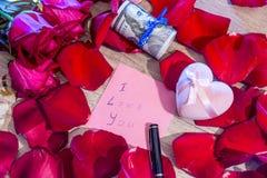 Lettera con ti amo la nota, la rosa rossa e la penna Immagine Stock