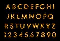 Lettera della fonte del fuoco, alfabeto in fiamme Fotografia Stock Libera da Diritti
