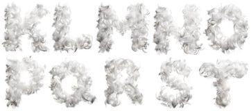 Lettera delle piume del pollo Fotografia Stock