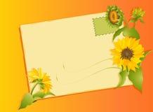 Lettera di estate con i girasoli Fotografia Stock