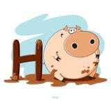 Lettera H con il maiale divertente Fotografia Stock Libera da Diritti