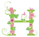 Lettera H con le rose Immagine Stock