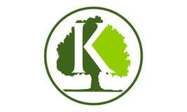 Lettera K della quercia Immagini Stock Libere da Diritti