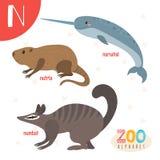 Lettera N Animali svegli Animali divertenti del fumetto nel vettore ABC fischia Immagini Stock
