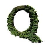 Lettera Q fogliame/della pietra illustrazione di stock