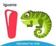 Lettera rosa I e iguana verde Immagini Stock Libere da Diritti