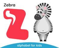 Lettera rosa Z e zebra sveglia barrata Fotografia Stock