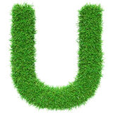 Lettera U dell'erba verde Fotografia Stock