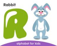 Lettera verde R e coniglio blu immagine stock