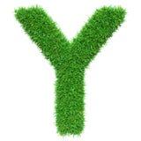 Lettera Y dell'erba verde Fotografia Stock
