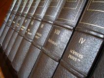Letteratura Immagine Stock