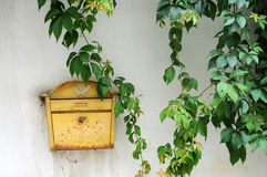 letterbox 库存照片