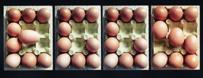 Lettere che formano le uova di parola Fotografia Stock