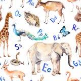 Lettere di alfabeto, animali selvatici, uccelli Reticolo senza giunte puerile Acquerello dello zoo illustrazione vettoriale