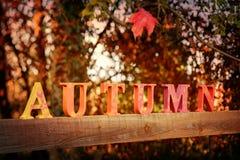 Lettere di autunno fotografia stock