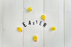 Lettere di Pasqua e pulcini lanuginosi Immagine Stock