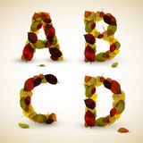 Lettere/fonte tipografica di alfabeto di vettore di autunno Immagini Stock Libere da Diritti