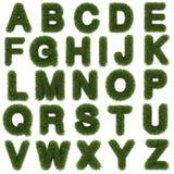 lettere superiori dell'alfabeto dell'erba verde isolate sopra Fotografia Stock