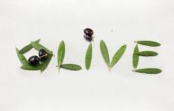 Lettere verde oliva e verde oliva con il percorso Immagine Stock