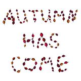Lettering in autumn leaves Royalty Free Stock Images