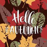 Lettering design with abstract autumn background with leaves. Stock Images