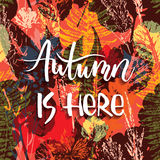 Lettering design with abstract autumn seamless background. With leaves. Trendy hand drawn textures Royalty Free Illustration