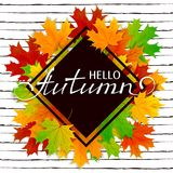 Lettering Hello Autumn with maple leaves. Lettering Hello Autumn with black banner and maple leaves on striped background, illustration Stock Image