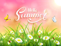Lettering Hello Summer on pink nature background Stock Photography