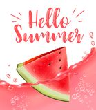 Lettering hello summer. Watermelon vector print Stock Image