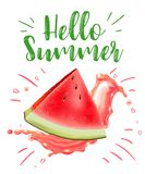 Lettering hello summer. Watermelon vector print Royalty Free Stock Photo