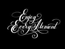 Lettering inscription Enjoy every moment motivation quote stock illustration