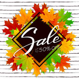 Lettering Sale with maple leaves Stock Photography