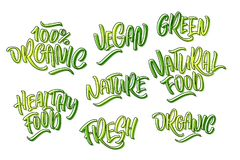 Lettering set for natural products in green colors. Handwritten. Logo fresh, organic, Vegan, green, natural food, 100% natural, Nature, Healthy food. Vector Stock Photo